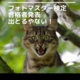【フォトマスター検定】「緊急告知」フォトマスター検定1級の合否判定が出てました!(>∀<;)