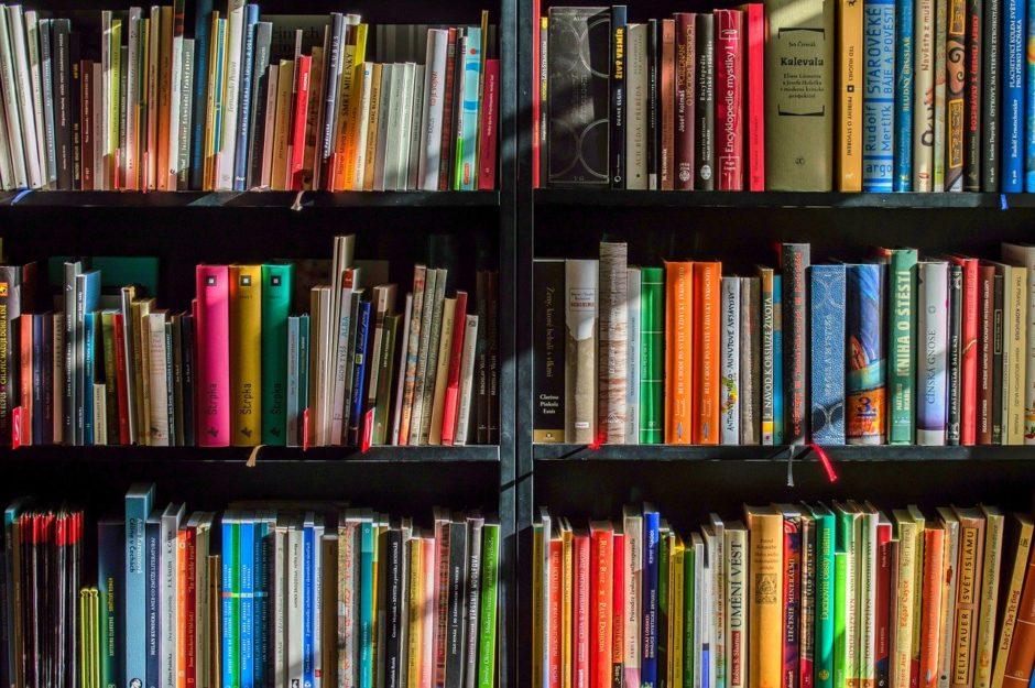本棚に並ぶ色とりどりの書籍