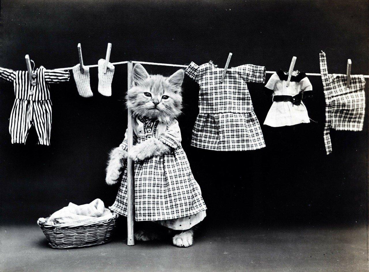 ファッション 服選び