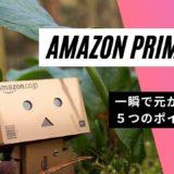 今更だけどAmazon Prime(アマゾン・プライム)〜あなたは押さえてますか?一瞬で元が取れる5つのポイント