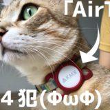 脱走前科のある犬や猫にApple AirTag(エアタグ)をペット用ケースで装着〜脱走時の捜索がはかどるコト間違いなし!